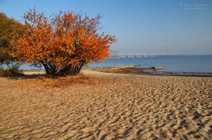 Dnieper beach